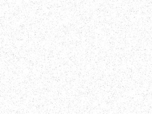Fond_mouchete-noir_blanc_damoiseaux