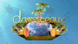 Carte_postale_damoiseaux_ile_glacee_palmiers_poissons