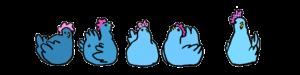 dessin-poules-bleues-damoiseaux